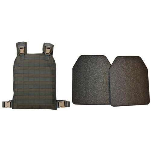 Modular Plate Carrier With Plates